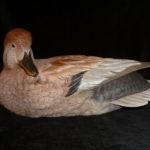 Profile picture of William Underwood